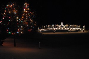 Windmont lighting trees